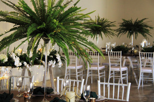 Gracelands Tropical setup 13.JPG