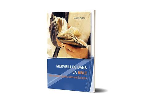 MERVEILLE DANS LA BIBLE