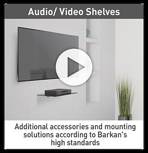 Barkan video Shelves.png