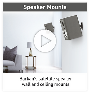 Barkan video Speaker.png