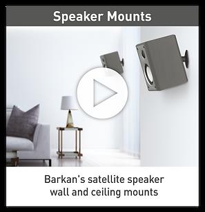 Barkan video Speaker.png