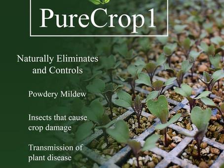Placerville's Newest Sponsor: PureCrop1