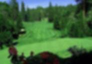 8225_Apple-Mountain-Golf-Resort.jpg