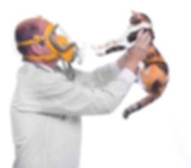 Pet allergy, seasonal allergy, utah's best allergy doctor, allergist