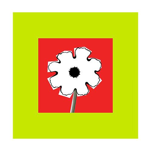 Flowerhead White