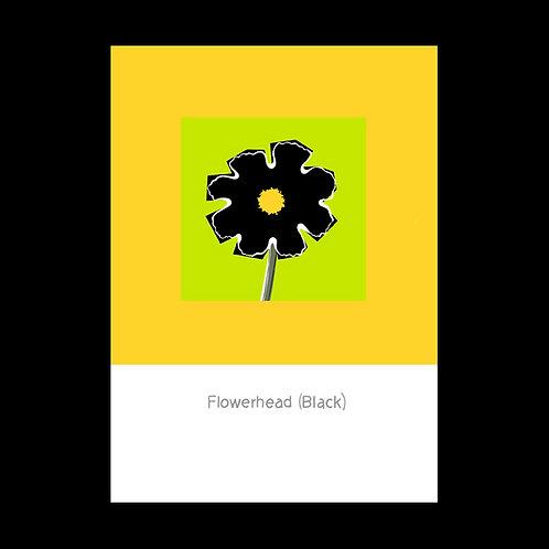 Flowerhead Black POSTCARD
