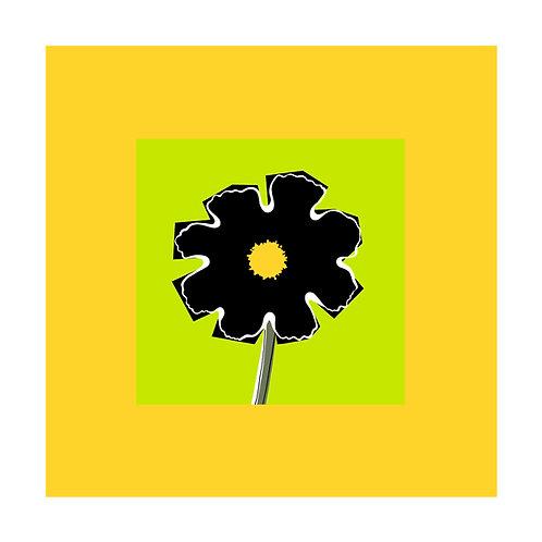 Flowerhead Black