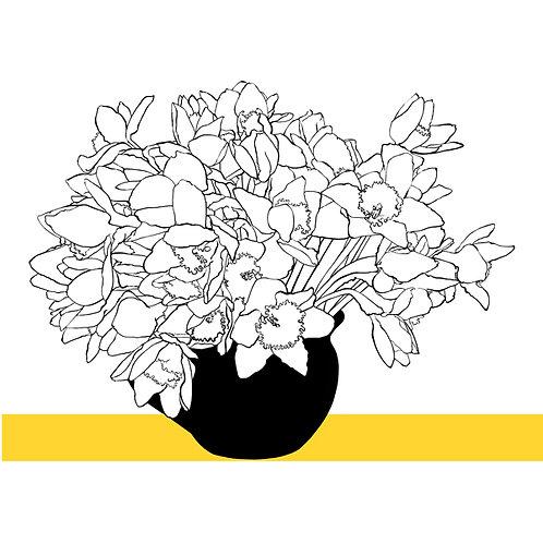 Line Sunday Daffodils