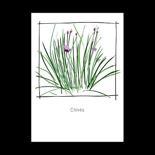 Chives POSTCARD