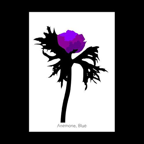 Anemone Blue POSTCARD