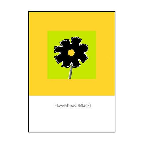 Flowerhead (Black) Postcard