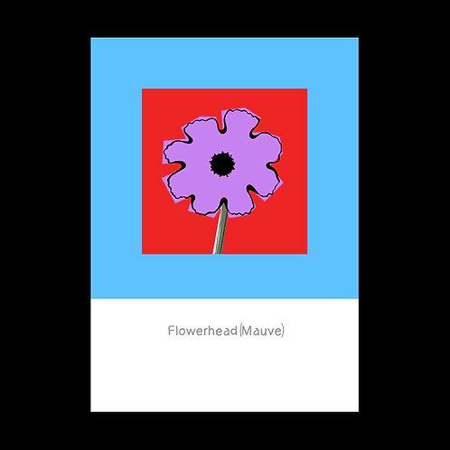 Flowerhead Mauve POSTCARD