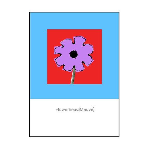 Flowerhead (Mauve) Postcard