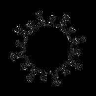 coronavirus-2019-.png