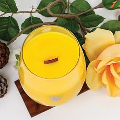 HINOKI | FRAGRANCE | VIVAWANG® International | Fine Fragrances | Candles | Warmers | Taiwan