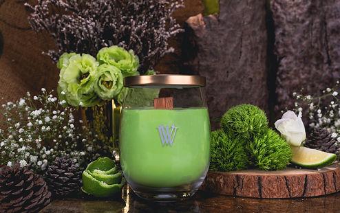 WORMWOOD   FRAGRANCE   VIVAWANG® International   Fine Fragrances   Candles   Warmers   Taiwan