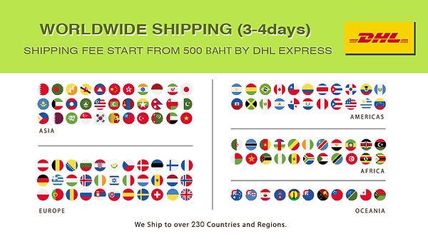 DHL shipping-01.jpg