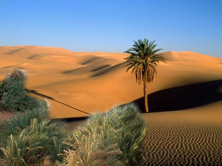 The Sahara Desert Was Once Green!