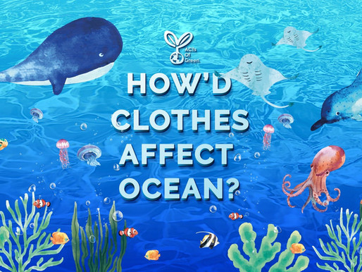 How'd Clothes Affect Ocean?