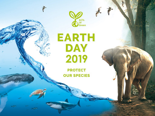 - EARTH DAY 2019 -                Protect Our Species