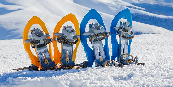 randonnée-raquette-team-building-hiver.p