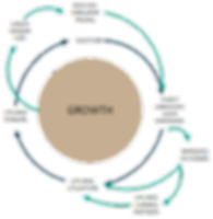 Network Wheel 3.png