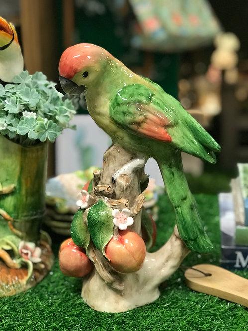 Papagaio tronco pêssego