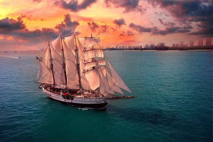 Royal Albatross Cruise Voucher