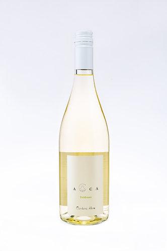 Felicissimo H Acca White Wine Trebbiano (750 ml)