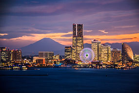 Minato Mirai Top.jpeg