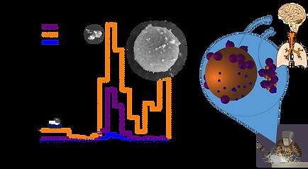 nanocollector.png