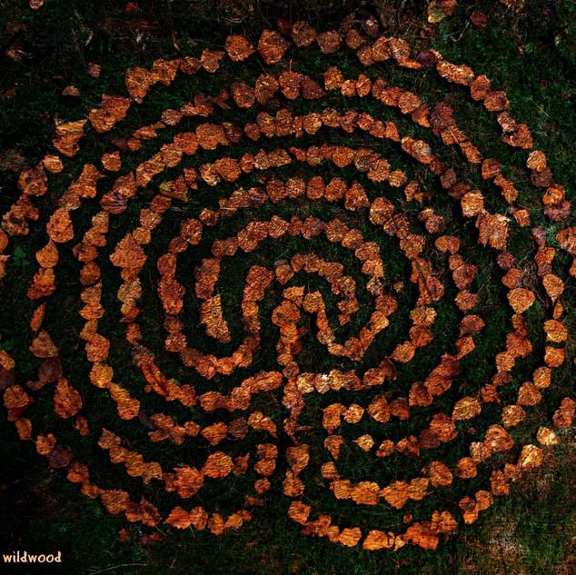 Birch Leaf Labyrinth