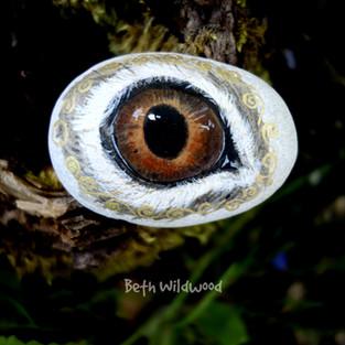 The Enchanted Eye