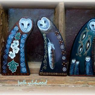 Owl Guardians