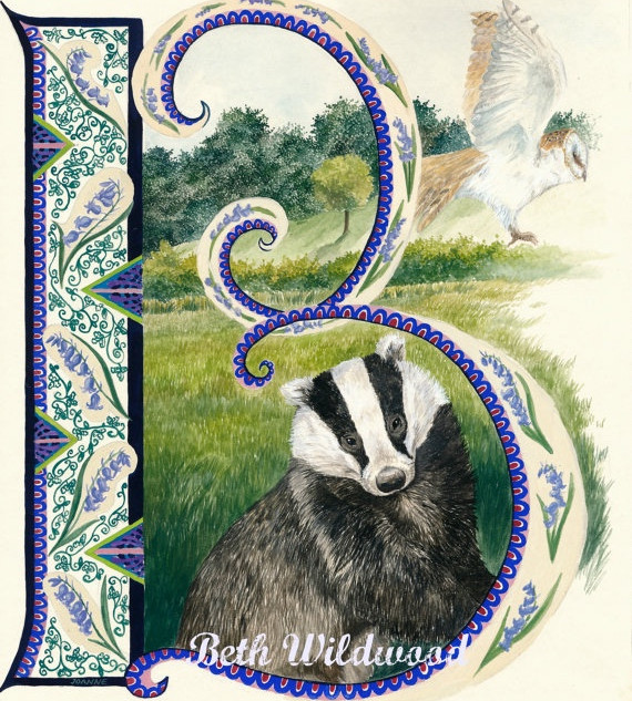 B is for Badger, Barn owl and Bluebell