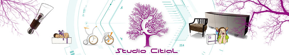 Logo studio Citial