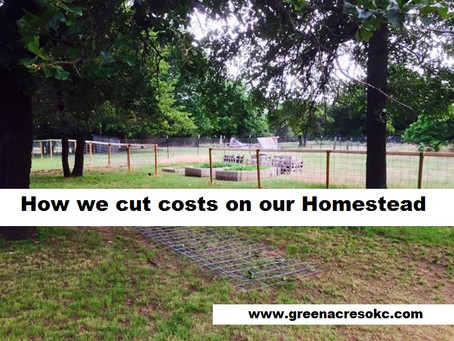 How to cut costs on the Homestead