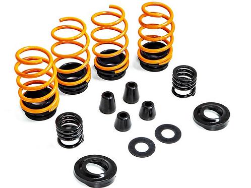 MSS F97 X3M adjust spring kit