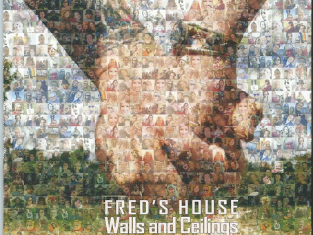 Fred's House - Walls & Ceilings