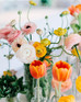 Flower Friday - Ranunculus