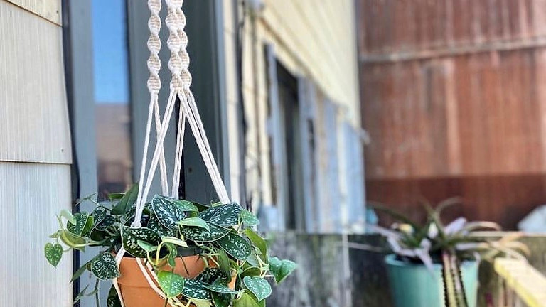 Make-and-Take Macrame Plant Hanger with Hanging with Hannah