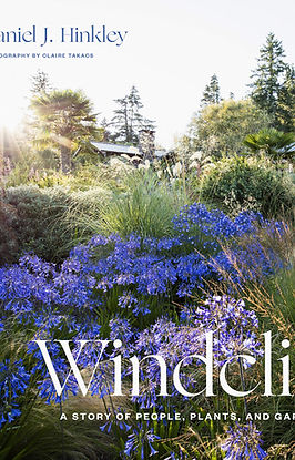 Windcliff book cover.jpg