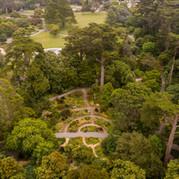 San Francisco Botanical Garden drone photo