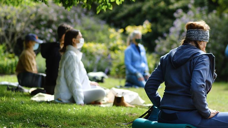 Fall Meditation in the Garden