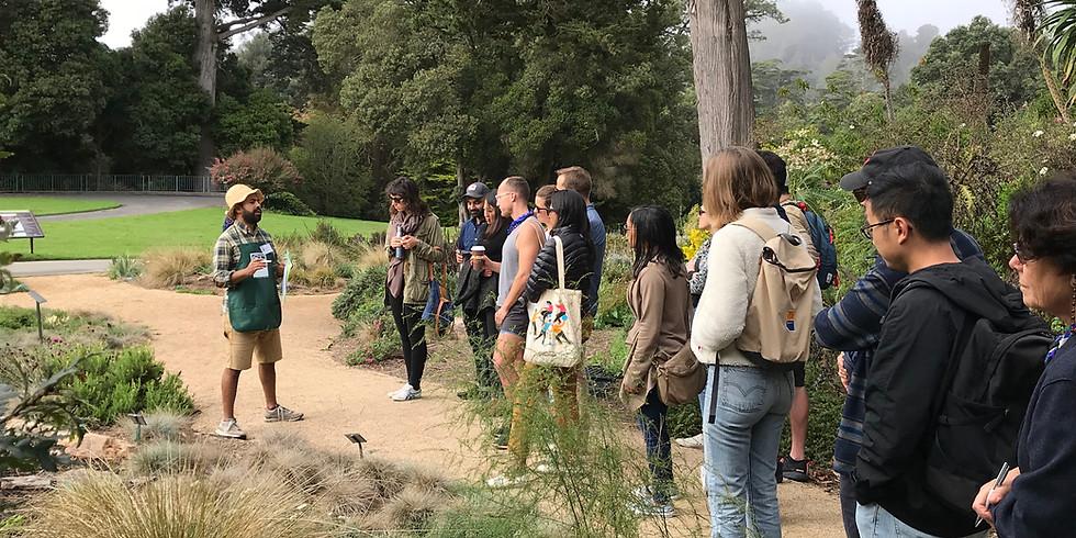 Garden Tour: Celebrating Fall