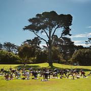 Yoga at San Francisco Botanical Garden