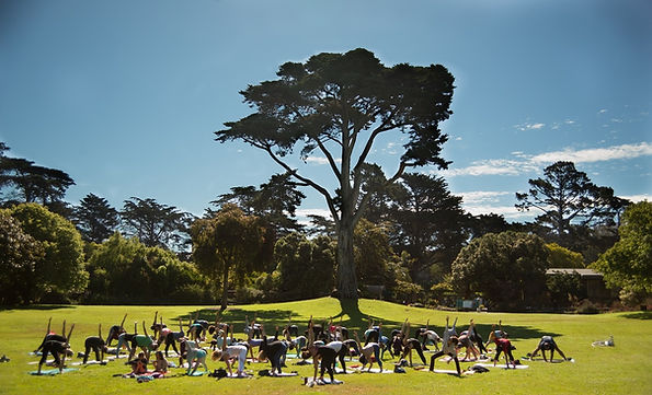 Yoga new web homepage resize trial.jpg