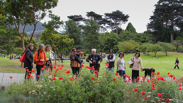 Garden Tour: Celebrating Spring