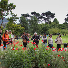 Tour of the Garden