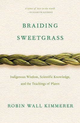 Braiding Sweetgrass Cover.jpg